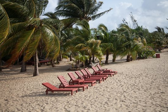 Singing Sands Inn: Lounge chairs on the beach