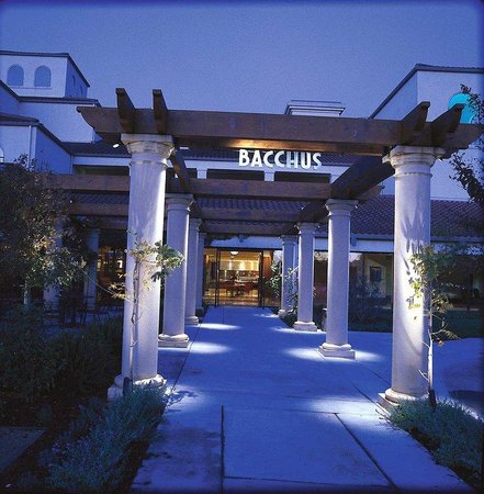 DoubleTree by Hilton Hotel Sonoma Wine Country: Bacchus Awaits You