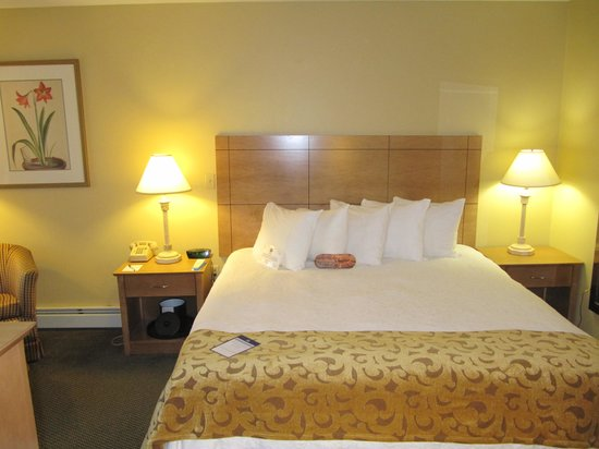 BEST WESTERN PLUS Inn & Suites Rutland/Killington : bedroom