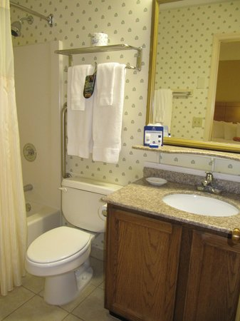 BEST WESTERN PLUS Inn & Suites Rutland/Killington : bath pic 2