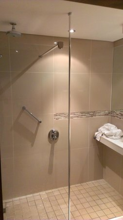Holiday Inn Johannesburg-Rosebank: Nice bathroom with waterfall shower