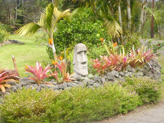 Aloha Junction Bed and Breakfast: Gardens