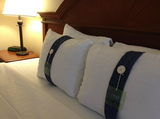 Holiday Inn Midtown / 57th St: PILLOW