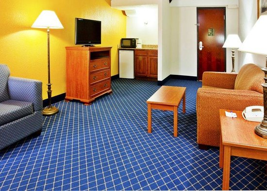 Holiday Inn Express Hotel & Suites Nashville - I-40 & 1-24 (Spence Lane): Junior Suite
