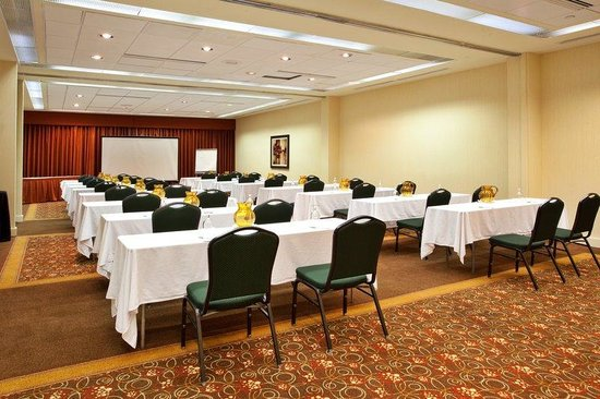 Holiday Inn Atlanta Downtown: Banquet Room