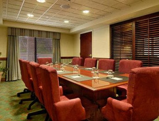 Wingate by Wyndham Lake George: Meeting Room