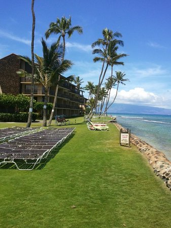 Aston at Papakea Resort: Ocean Front Sea Wall and grounds
