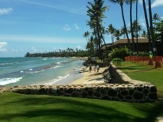 Aston at Papakea Resort: Sea Wall and grounds .. small beach at low tide