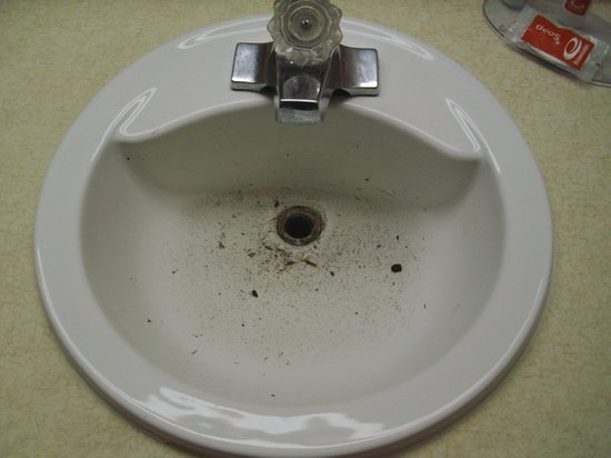 Econo Lodge University: The sink when I entered the room.