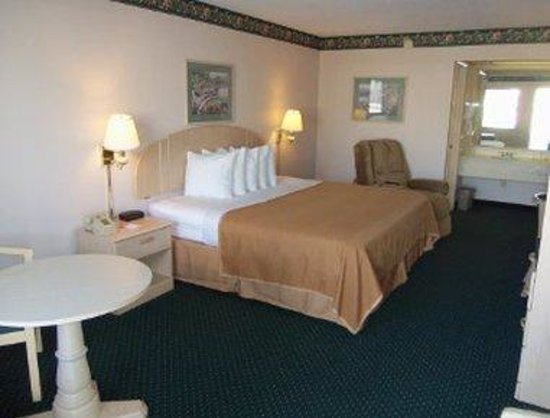 Port Richey, FL: 1 King Bed Guest Room