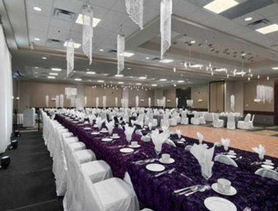 Ramada Winnipeg Hotel-Viscount-Gort: Meeting Room 2 - Windsor Room