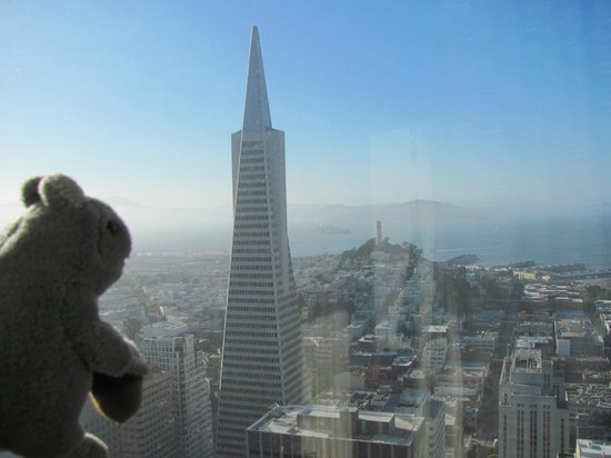 Mandarin Oriental, San Francisco: Boo Boo cried when we left