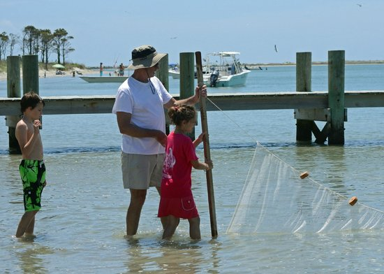 Morehead City, NC: on the sound side with the net