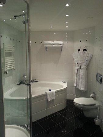 Hilton Hotel - Berlin: Bathroom 1