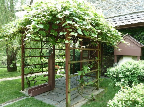 Columbia, Пенсильвания: A grape vine covers a structure over a water pump near the oven.