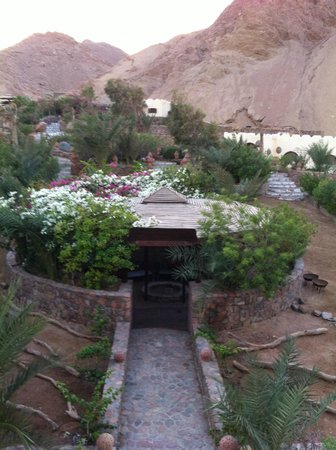 The Bedouin Moon Hotel: Hotel ground - mountain side