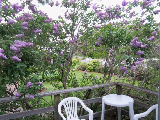Allen Harbor Breeze Inn & Gardens: Lilac Room porch