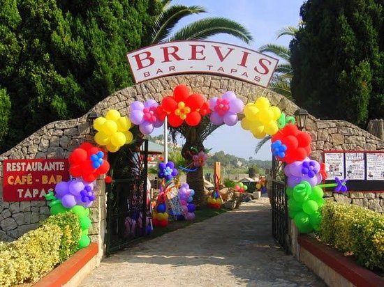 The Brevis