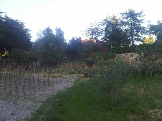 Country House La Celletta: l'orto