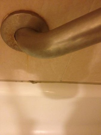 Millennium Airport Hotel Buffalo: mold and dirty