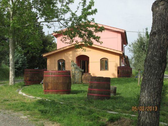 Peccioli, Italy: The Winery