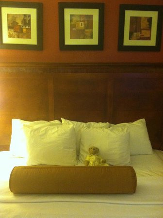 Comfort Inn Airport / Cruise Port South: Queen Bed