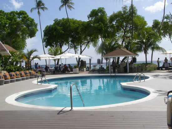 Paynes Bay, Barbados: Small but never crowded pool
