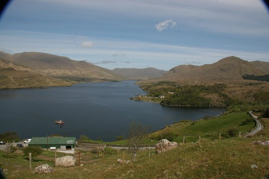 Leenane, Irlandia: Fjords from Kilary Sheep Farm