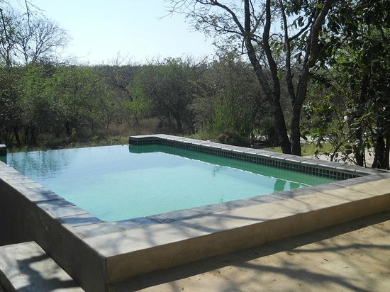 Marloth Park, South Africa: Eternity Swimming Pool