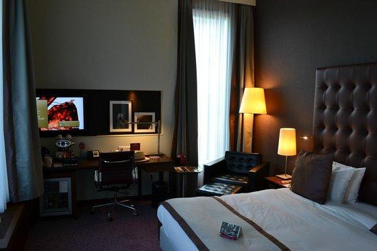 Crowne Plaza Amsterdam South: The room with canal view