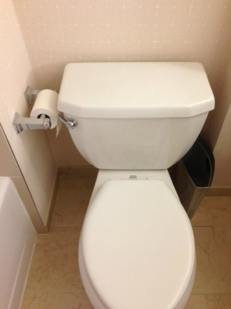 Hilton Times Square: There must have been somewhere better for the toilet holder to go!