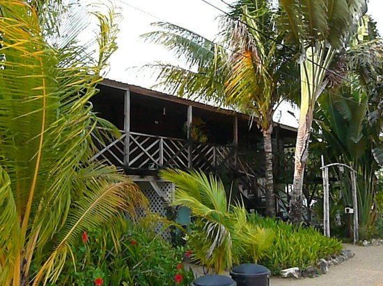 Ally's Guest House Belize: Front of Guest House
