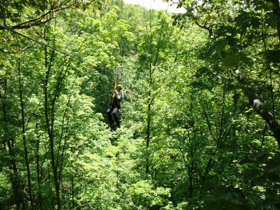 Boyne City, MI: Zipping over the woods