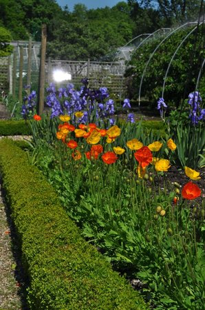 Somerset, UK: The Walled Garden