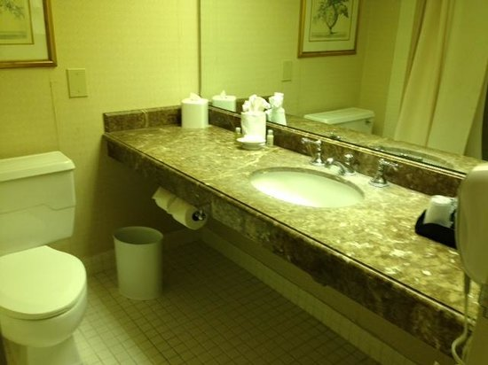 L'Enfant Plaza Hotel: Bathroom