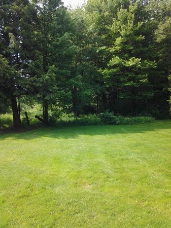 Chardon, OH: THE BACK YARD
