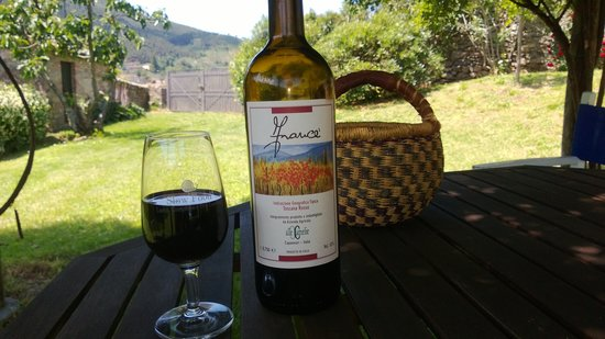 Alle Camelie: The very nice wine grown and produced biologically on the premises