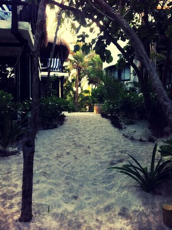Coco Tulum : Sandy pathway to beach