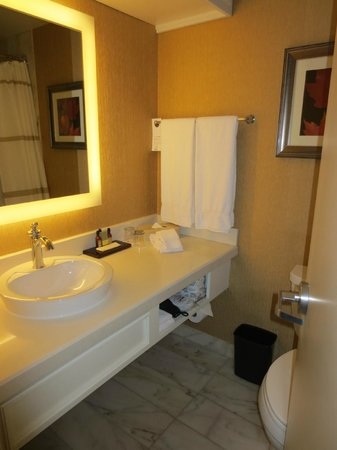 Marriott Chateau Champlain: Bathroom