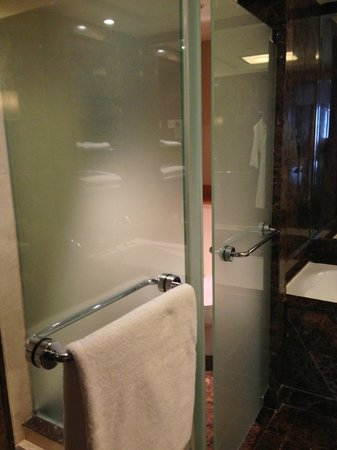 Grand Hyatt Singapore: Bathroom/Shower