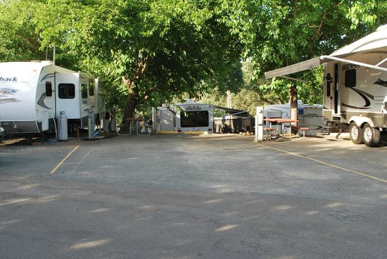 Auburn Gold Country RV Park: An asphalt back-in site before we backed in