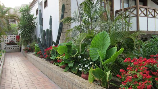 Hacienda Del Sol: Hotel grounds