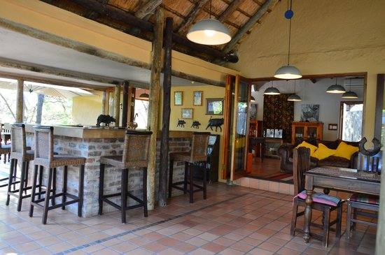 Toro Yaka Bush Lodge: Bar and lunch area