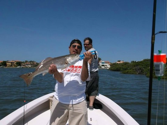 Big snook picture of tampa bay fishing charters tampa for Tampa florida fishing charters