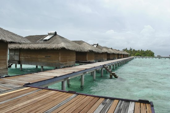 Medhufushi Island Resort: Water villas