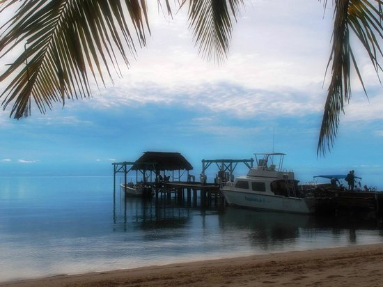 Hamanasi Adventure and Dive Resort: Morning serenity
