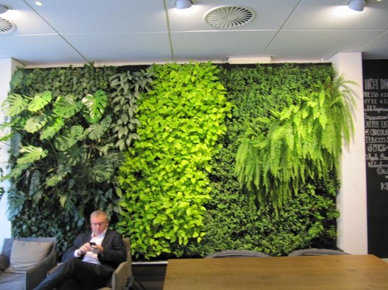 Conscious Hotel Vondelpark: Green wall fresh herbs and plants.