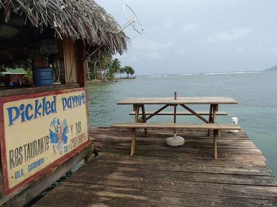 alojamientos bed and breakfasts en Carenero Island