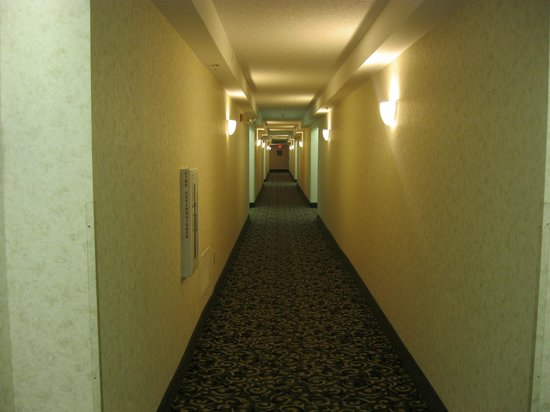 Homewood Suites Orlando/International Drive/Convention Center: Room corridor