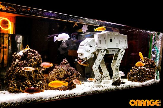 Star wars fish tank picture of orange rooms southampton for Star wars fish tank decorations